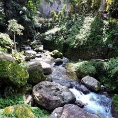 01-Bali-TN-Gunung-Kawi- (24)-min