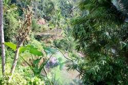 02-Bali-Gunung-Kawi (8)