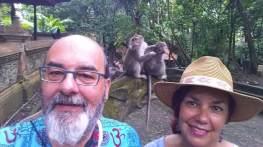 04-Bali-Ubud-Monkey Forest-Monos- (10)-min
