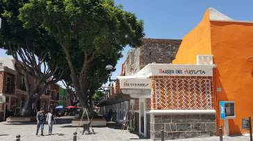 08-Puebla-Barrio-de-las-Artes (8)