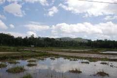 02-Indonesia-Sulawesi-Valle-Sangalla (13)