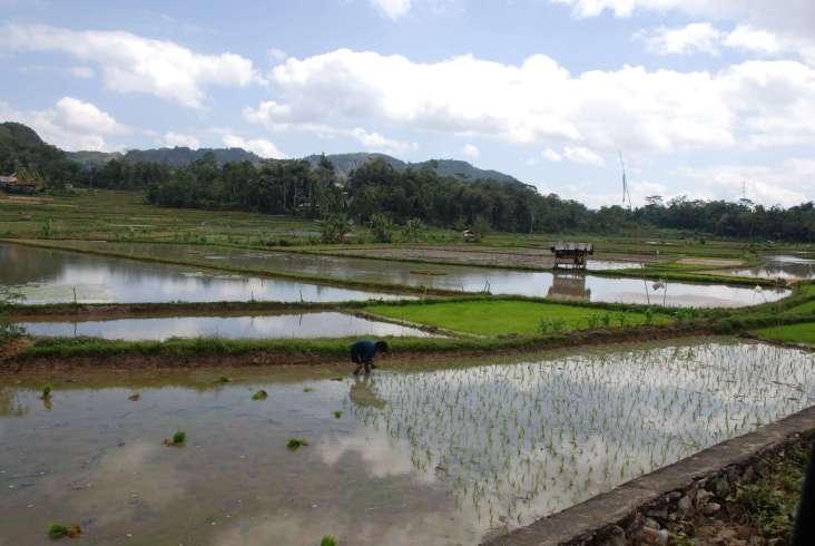 02-Indonesia-Sulawesi-Valle-Sangalla (6)