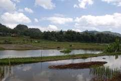 02-Indonesia-Sulawesi-Valle-Sangalla (9)