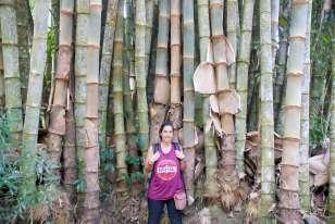 06-Indonesia-Sulawesi-Kambira (17)