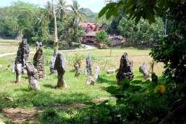 07-Indonesia-Sulawesi-BalikyotrasAldeas (40)