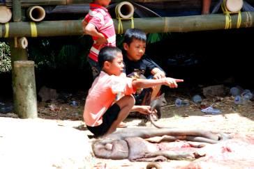 12-Indonesia-Sulawesi-Nanka (13)