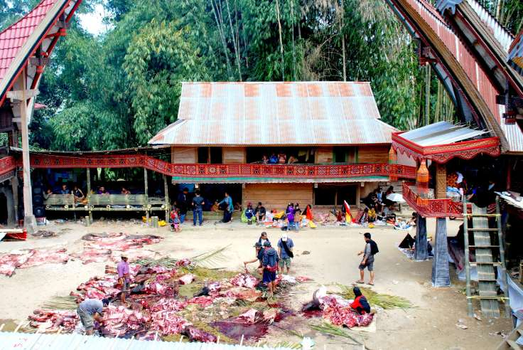 12-Indonesia-Sulawesi-Nanka-funeral (2)