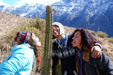 01-Peru-Valle-del Colca (15)