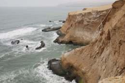 03-Peru-Reserva-de-Paracas (6)