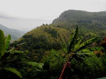 17-Sri-Lanka-Tierras-Altas-Ella