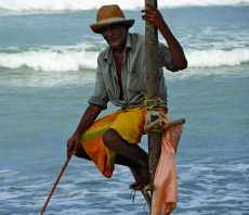 21-Sri-Lanka-Playa-Sur-05-Zancudos