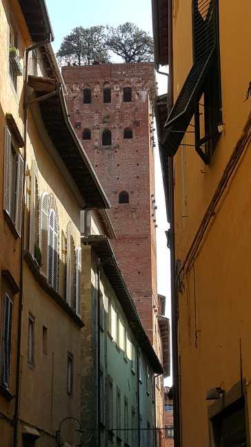 01-MF-Lucca- (37)-min