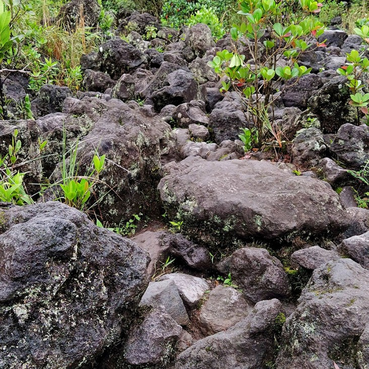 02-CR-MOV-Volcan-Arenal-0 (99)