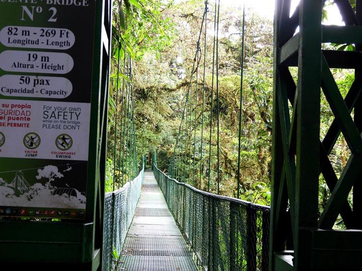 04-CR-CAM-Monteverde- (27)