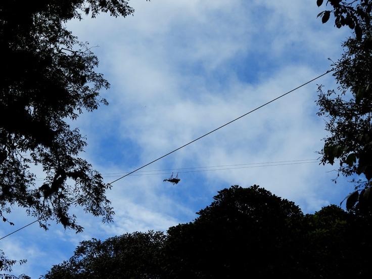 04-CR-CAM-Monteverde- (44)