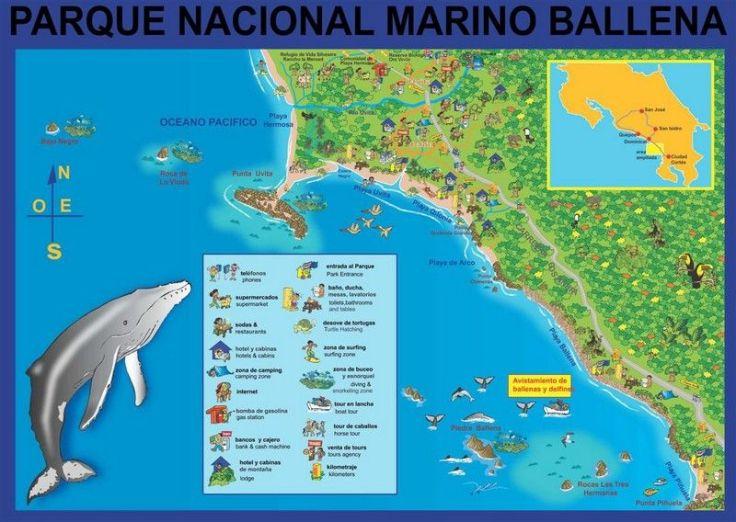 mapa-PN-Marino-Ballena