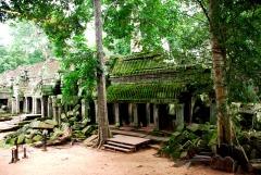 01-Camboya-Siam-Reap-02-Ta-Prohm-0 (108)