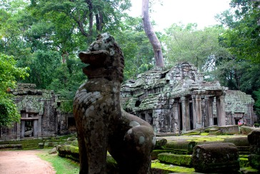 01-Camboya-Siam-Reap-02-Ta-Prohm-0 (118)