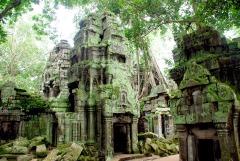 01-Camboya-Siam-Reap-02-Ta-Prohm-0 (90)